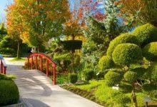 Photo of عکسهای زیبای پارک و فضای سبز