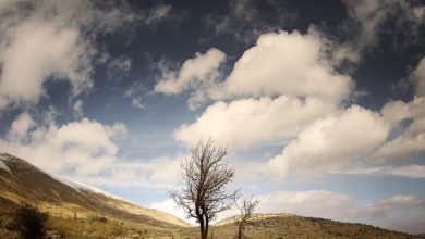 Photo of تصاویر بکر و آرامش بخش طبیعت