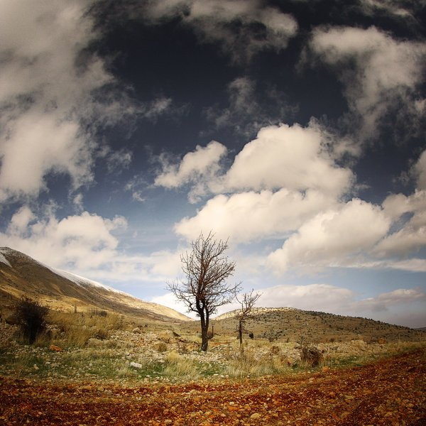 تصاویر بکر و آرامش بخش طبیعت