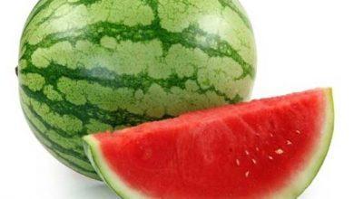 Photo of مناسب ترین زمان برای مصرف هندوانه