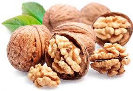 تقویت اسپرم راههای تقویت اسپرم در مردان راههای تقویت اسپرم در مردان walnut eb0178