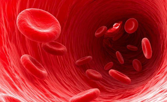 غلیظ کننده های خون مشهور