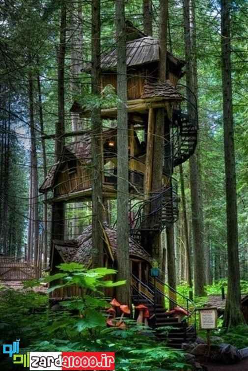 کلبه جنگلی قشنگ
