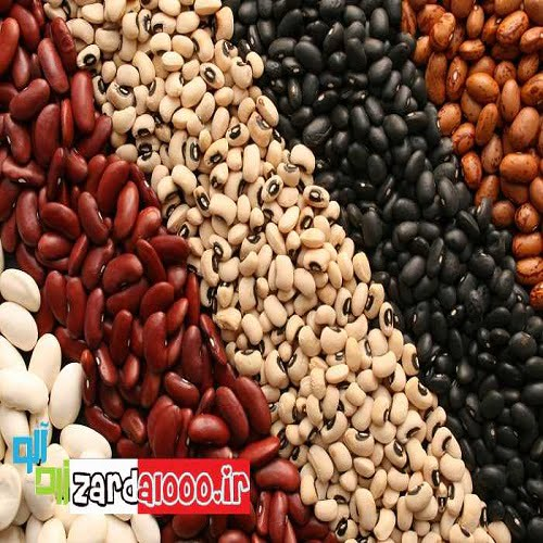 لوبیا غذایی با فسفر فراوان ،مفید برای مغز و اعصاب