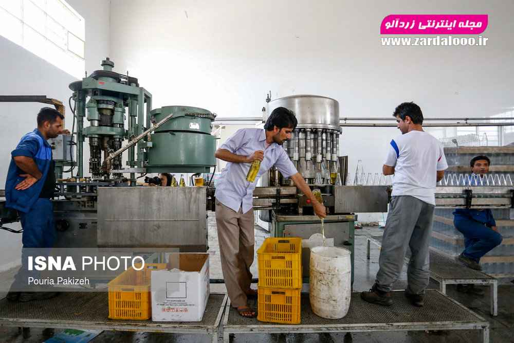 کارخانه تولید روغن کنجد که توسط بنیاد علوی در شهرستان قلعه گنج احداث شده و باعث اشتغال زایی تعدادی از اهالی بومی این شهرستان شده است.