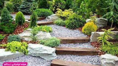Photo of ایده های بسیار زیبا برای طراحی حیاط و باغچه