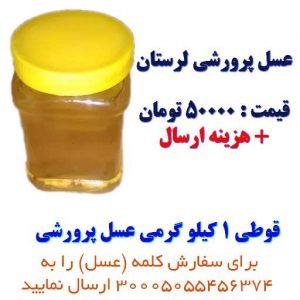 فروش عسل پرورشی با کیفیت لرستان ارسال به تمام نقاط ایران