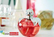 Photo of بهترین عطر و ادکلن های زنانه با قیمت مناسب
