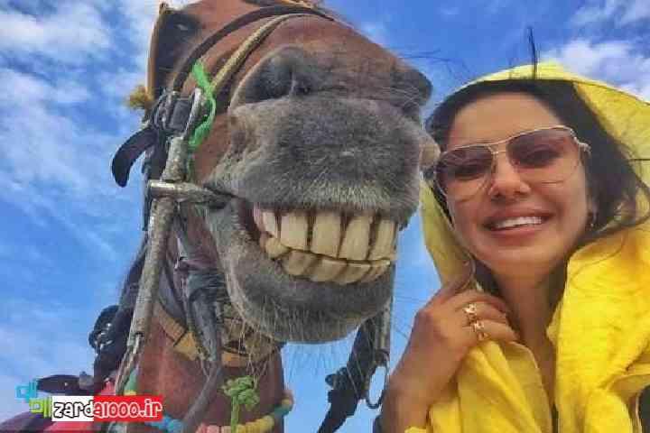 عکس جالب شیدا یوسفی و شتر زردآلو