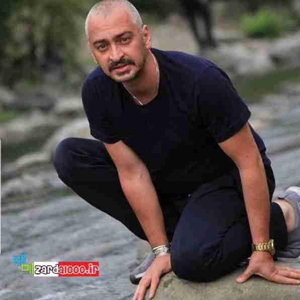 بیوگرافی سعید رضایی