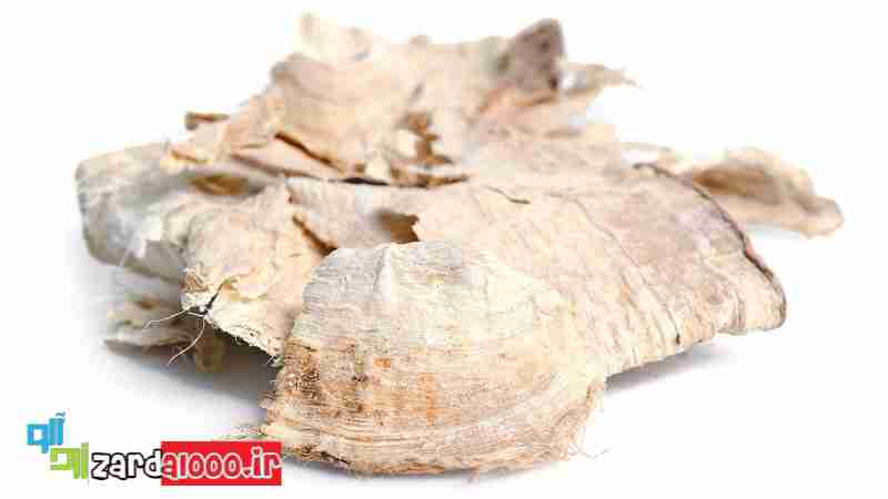 بهبود سلامت پوست با مصرف  پیوراریا میریفیکا